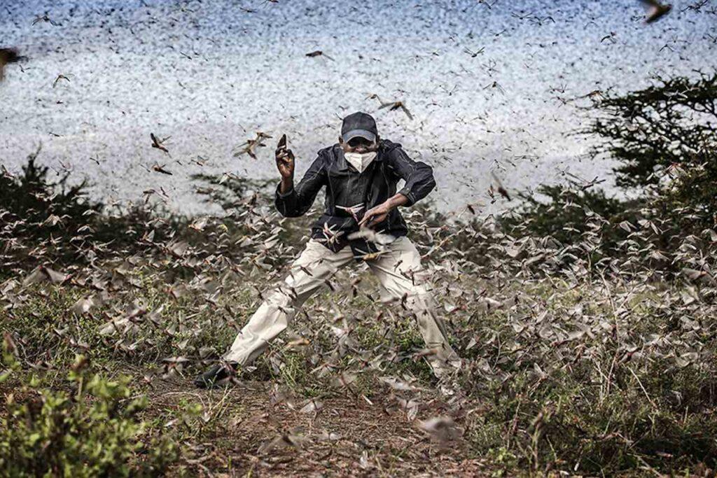 Sony World Photography Awards finalisti professional 2021 Luis Tato