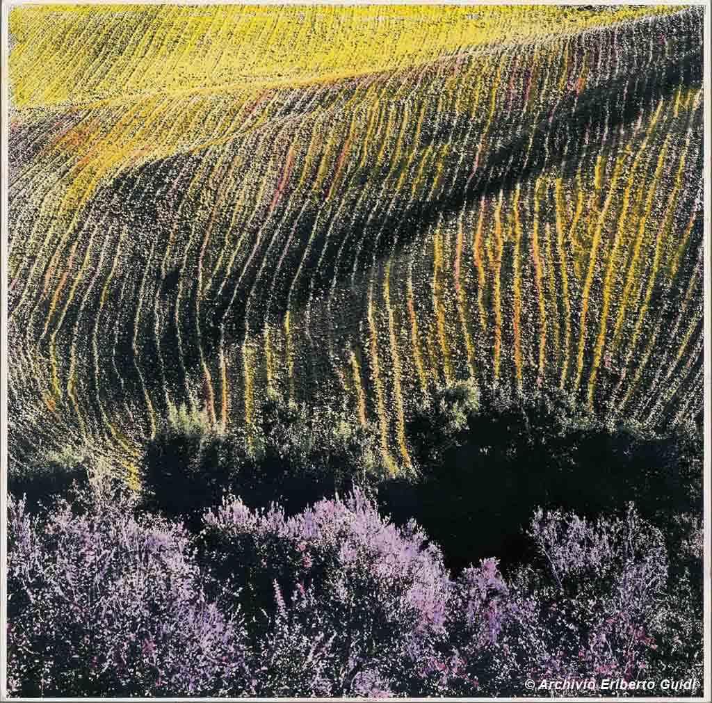 paesaggio a colori Eriberto Guidi