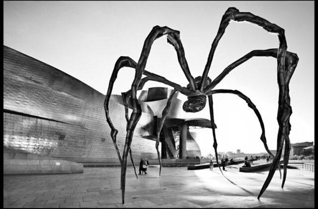 Museo Guggenheim L Bilbao 2007 Elio Ciol