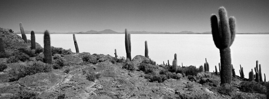 Richard de Tscharner mostra Todi Isla del Pescado Bolivia 2008