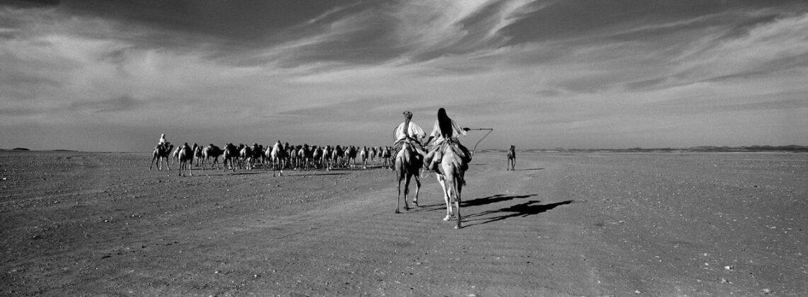 Richard de Tscharner mostra Todi Tant que leau coulera Sudan 2010