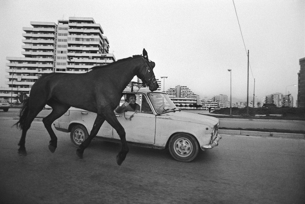 Francesco Cito Napoli The horse in tow 1985