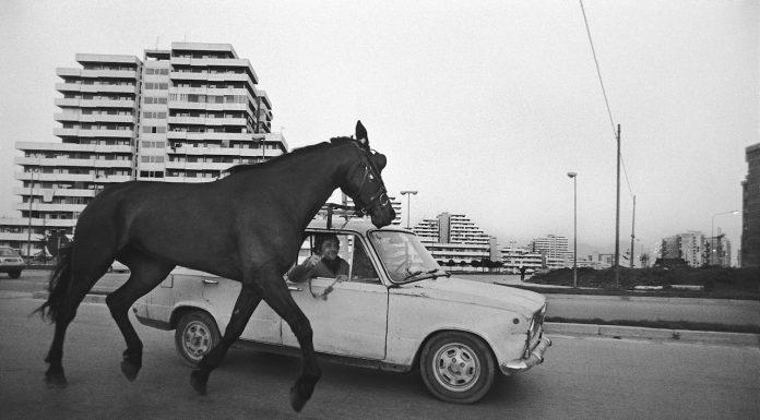 Wide Gaze di Francesco Cito: le foto in mostra in Sardegna