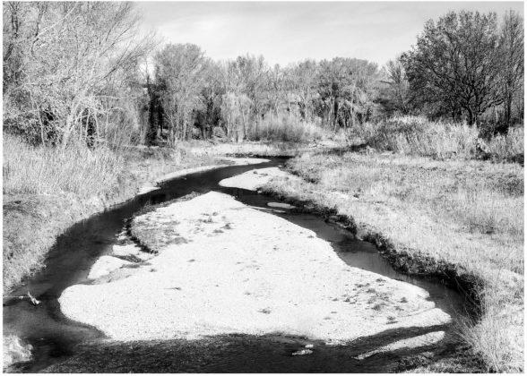 fiume misa Andrea Secco