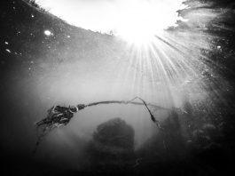 A Senigallia la mostra fotografica che racconta il fiume Misa