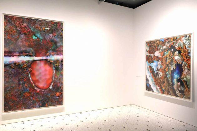 Richard Mosse: perché vedere la prima mostra antologica a Bologna