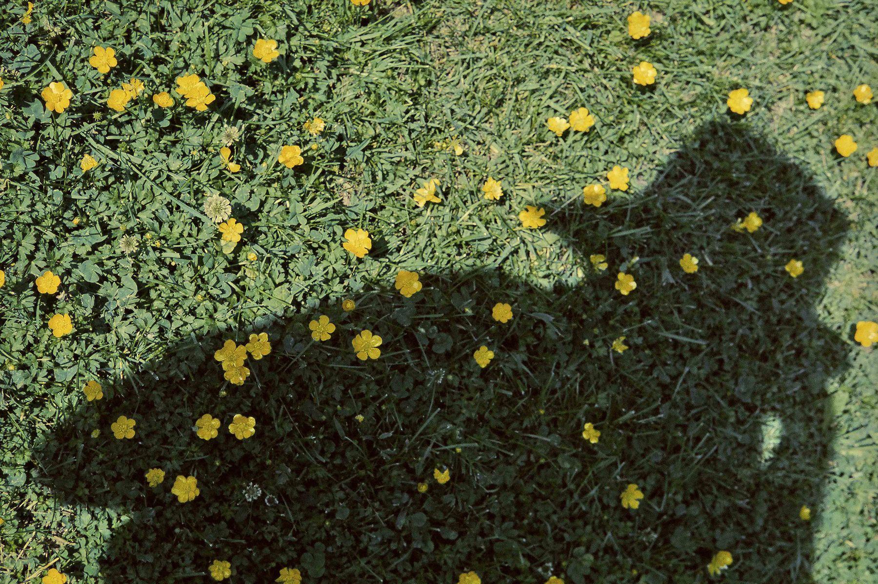 vivian-maier-new-york-howard-greenberg-1-4